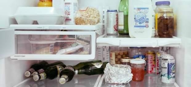 almentos-refrigerador